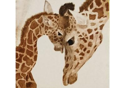 Tendresse de girafes