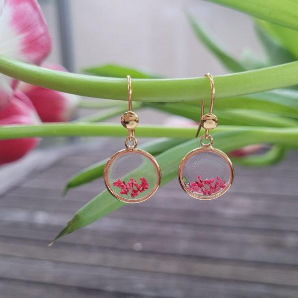 Boucles d'oreilles pendantes avec fleurs d'ammi majus rouge suspendue